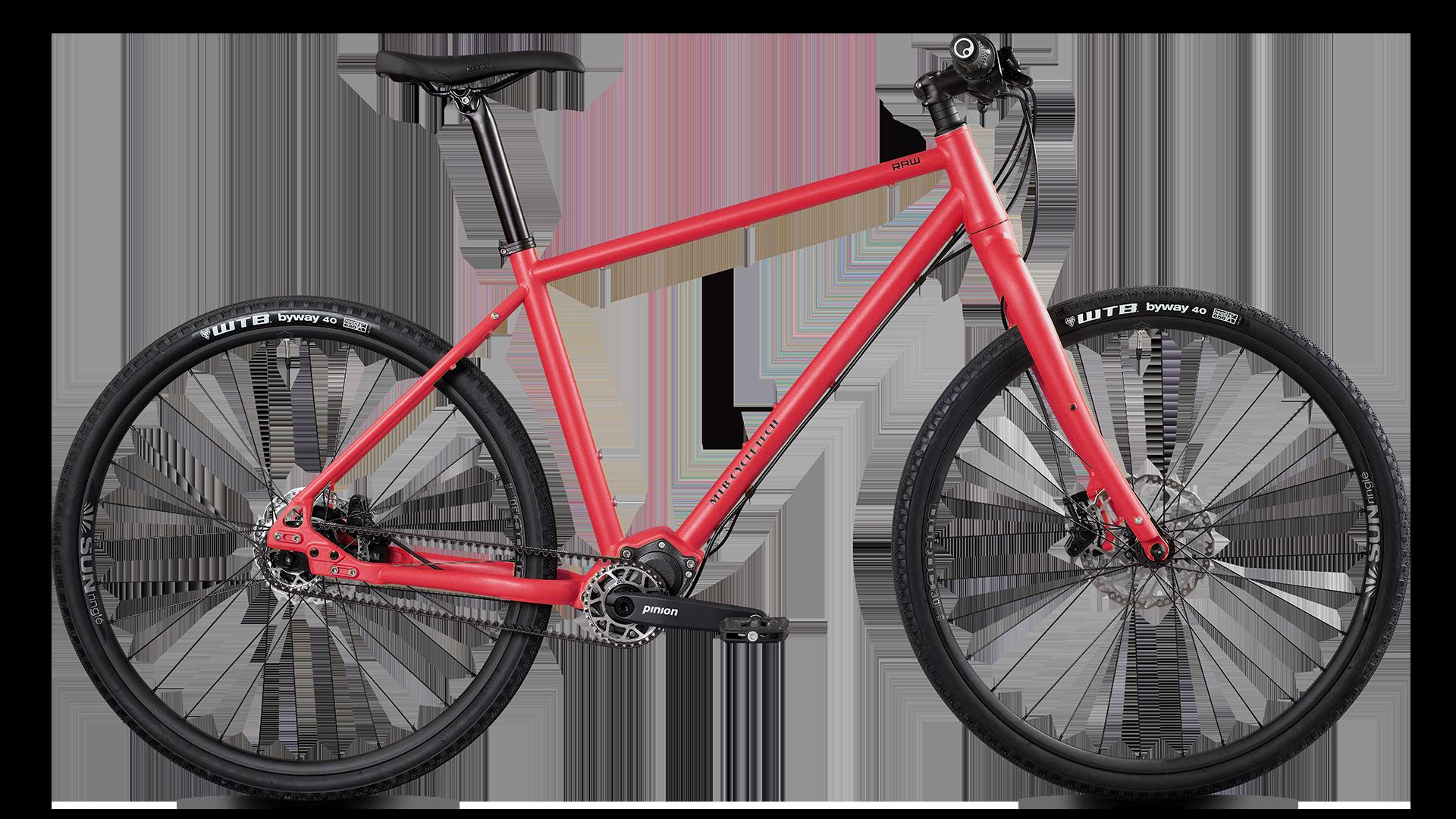 Modell - Raw GP - MTB Cycletech